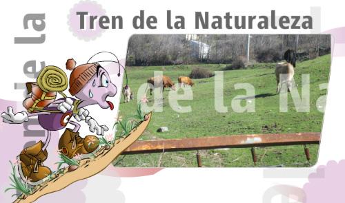 taller-naturaleza